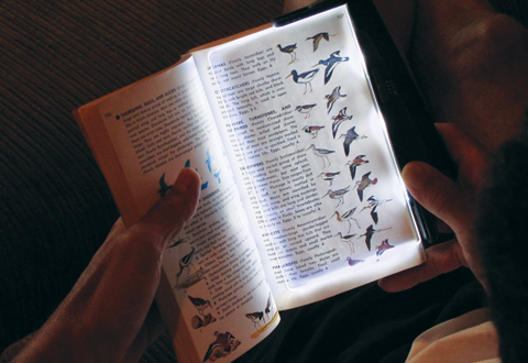 Image result for reading with book light