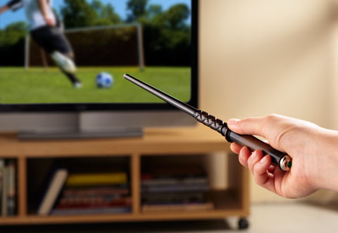 Magic Wand Remote Control At Sharper Image