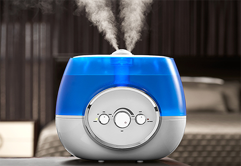 Warm And Cool Mist Humidifier At Sharper Image